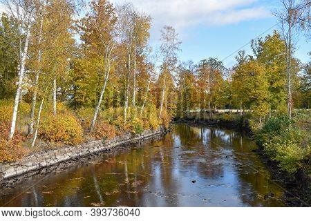 Beautiful Fall Colors By A Small River In The Swedish Province Smaland