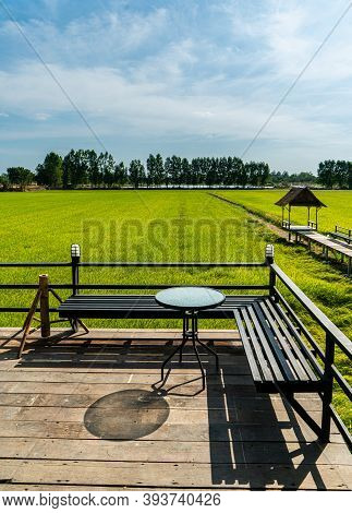View Of Beautiful Rice Field And Little Shelter In Countryside Of Thailand