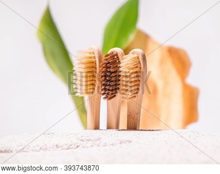 Zero Waste Toothbrushes On Eco Natural Background With Cement, Green Leaf And Cross Section Of The T