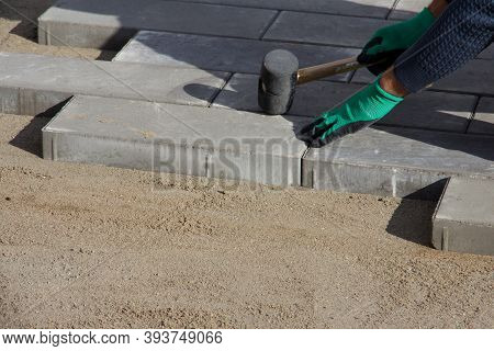 Brick Paver Working. Worker Lay Paving Tiles, Construction Of Brick Pavement. Architecture Backgroun