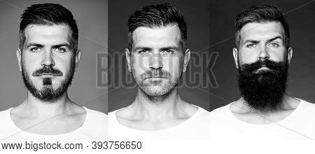 Bearded Man Or Hipster Set. Long Beard. Hair Style Hair Stylist. Barber Shop Design. Advertising And