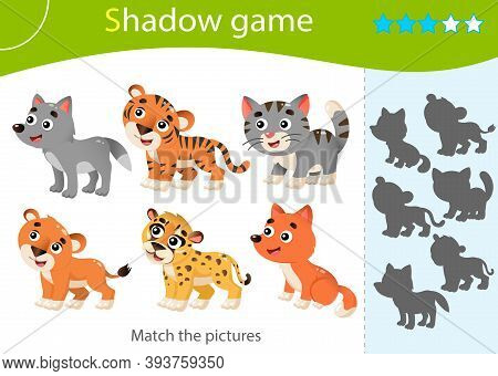 Shadow Game For Kids. Match The Right Shadow. Color Images Of Baby Animals. Little Cat, Wolf, Lion,