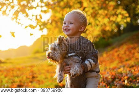 Simple Happiness. Sweet Childhood Memories. Child Play With Yorkshire Terrier Dog. Toddler Boy Enjoy