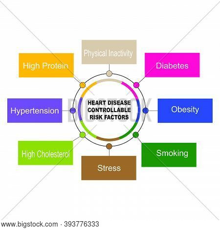 Diagram Of Heart Disease Controllable Risk Factors With Keywords. Eps 10 - Isolated On White Backgro