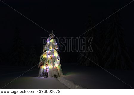 Holiday landscape with Christmas tree, snow and lights in winter mountains. New year celebration concept