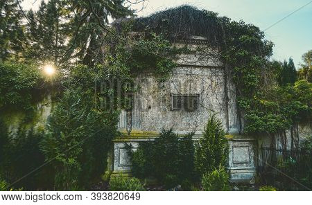 Old Grungy, Mystical Tomb Overgrown With Ivy