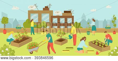 Urban Building With Flat Garden At Rooftop Concept, Vector Illustration. City Agriculture Gardening