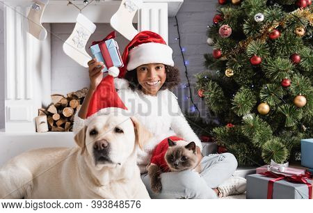 African American Girl Holding Christmas Gift Near Labrador Dog On Blurred Foreground