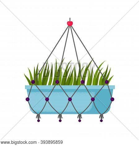 Beautiful Potted Home Hanging Flower. Decorative Indoor Grass. Vector Illustration Isolated On White