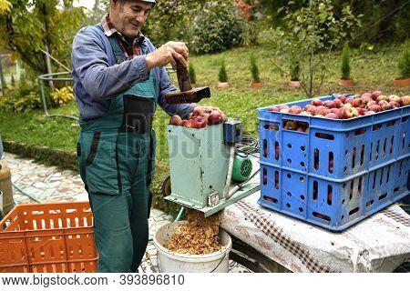 The Fruit Farmer Crushing Apples On A Crush Machine Making  Crushed Apple