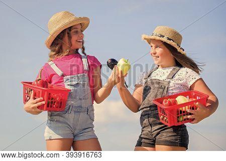 Natural Vitamin Nutrition. Organic Vegetables. Girls Cute Children In Hats Farming. Village Rustic S