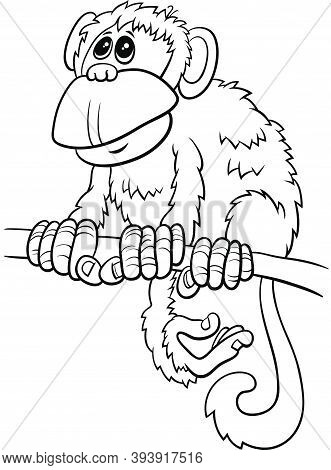 Black And White Cartoon Illustration Of Comic Monkey Primate Animal Character On Branch Coloring Boo
