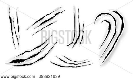 Cat Claw Scratches On Paper. Black Torn Slashes From Wild Animal, Tiger, Bear Or Lion Paws Isolated