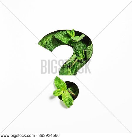 Question Punctuation Mark Of Green Mint Natural Leaf And Cut Paper Isolated On White. Peppermint Lea