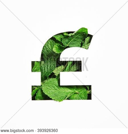Pounds Currency Sign Made Of Green Mint Natural Leaf And Cut Paper Isolated On White. Peppermint Lea