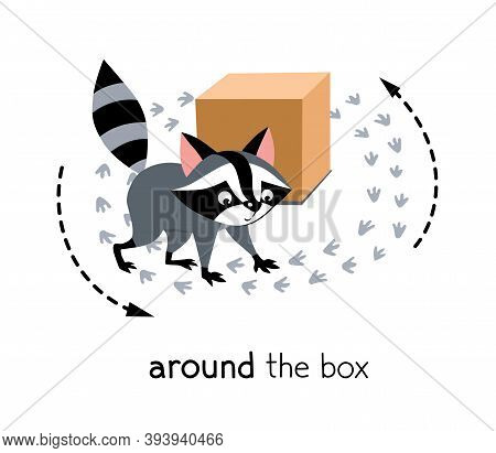 Preposition Of Movement. Raccoon Walks Around The Box