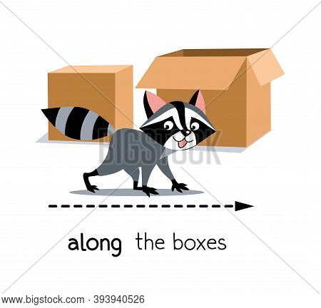 Preposition Of Movement. Raccoon Walks Along The Boxes