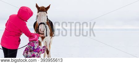 Young Mother With Her Little Daughter In Winter Clothes Feed The White And Brown Horse During The Ch