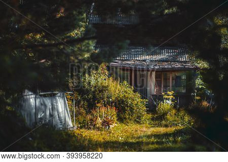 A Cozy Garden Framed With Trees Producing Shadows And A Veranda Of An Old Wooden Summer House In The