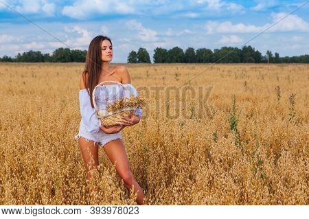 Young Beautiful Woman At Golden Oat Field Holding Basket With Ears Of Oats.