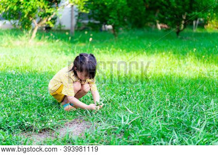 Asian Little Girl Wearing A Yellow Dress Sits On A Grassy Field In The Evening When Sunlight Shines