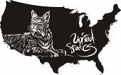 Bobcat and U.S. outline map. Black and white vector illustration. Lynx rufus. poster