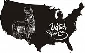 Pronghorn and U.S. outline map. Black and white vector illustration. Antilocapra americana. poster