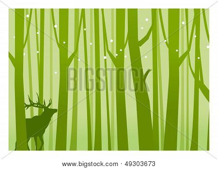 Deer In Forest Green