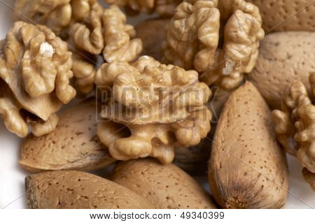 kernel and almonds