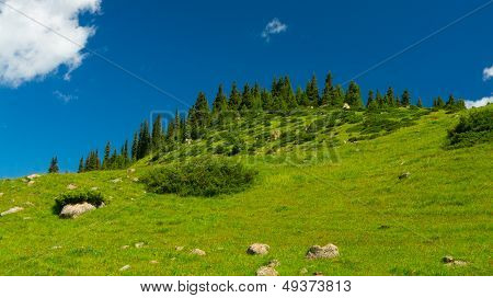 Hills, meadows and a green grass in Altyn-Arashan, Kyrgyzstan