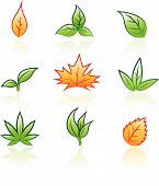Leaf icons isolated on a white background poster