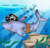 Cartoon pirate shark with shipwreck - color illustration. poster