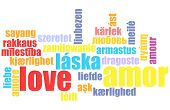 Love in Many Languages Text Abstract Background poster
