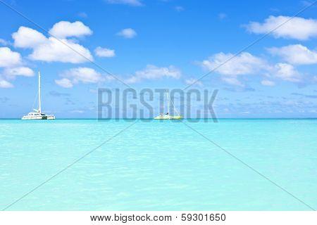 Sail yachts in a blue caribean sea poster