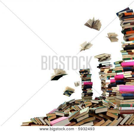 Buch-Ausverkauf