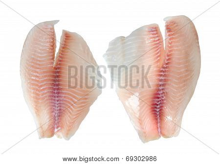 Tilapia Fillet Fish