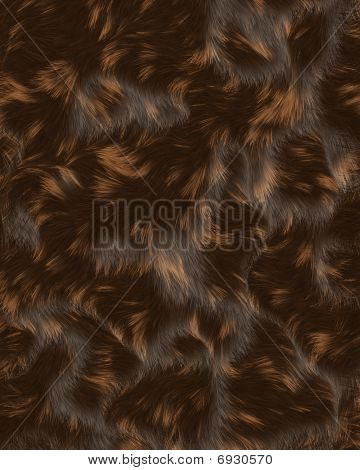 Cat fur swirls