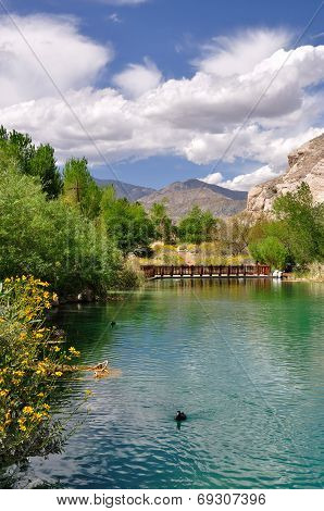 Pond in Whitewater Canyon