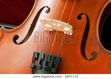 Violin Bridge And Srings