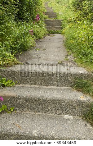 Concrete Steps And Overgrown Uphill Path.