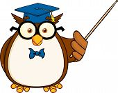 Wise Owl Teacher Cartoon Mascot Character With A Pointer poster