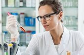 Horizontal view of scientist analyzing chemical liquid poster