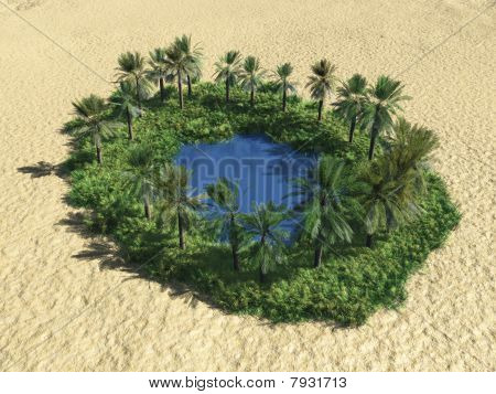 Oasis In The Desert