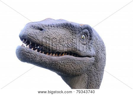 Dinosaur head in a Jurassic dinosaur museum