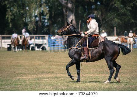 Gaucho on Horseback