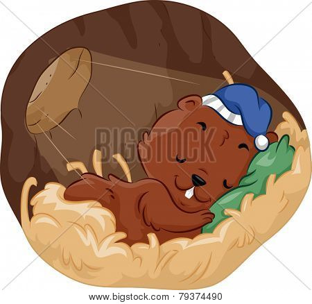 Illustration of a Rodent Sleeping Peacefully in His Burrow