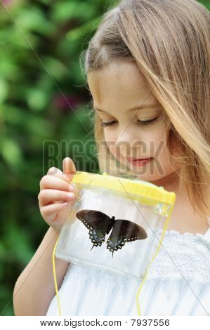 Kind vastleggen van vlinders