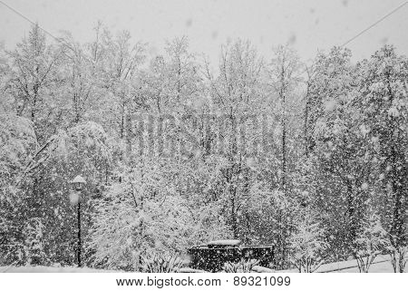 Heavy Snowfall