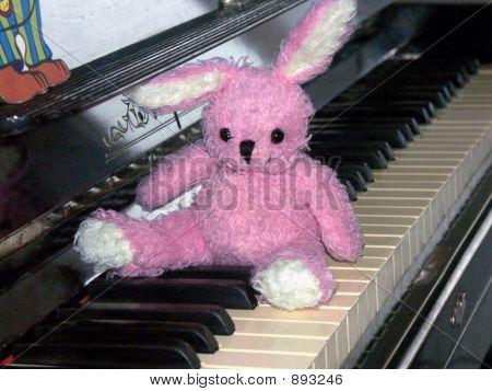Lost On A Keyboard