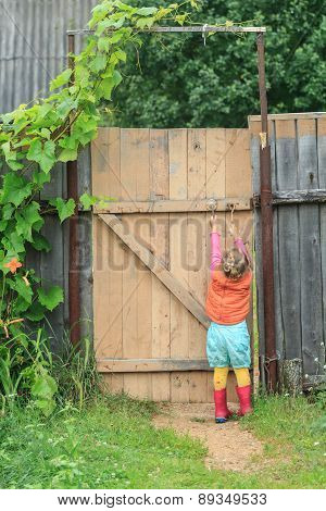 Two Year-old Toddler Girl Is Reaching Up Door Swivel Hook